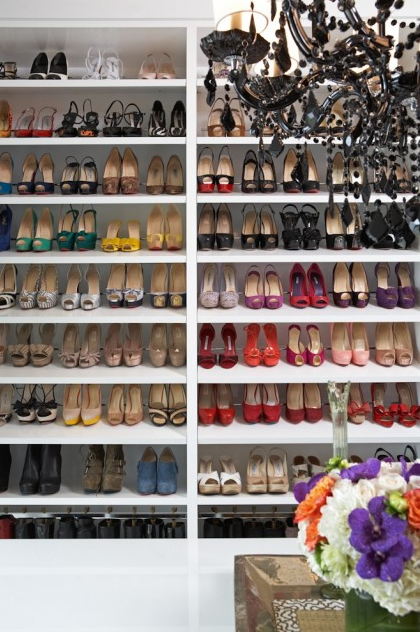 stylish-shoe-closet-thumb-420x632-147562